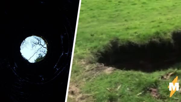 Собачница погуляла в парке и поверила в загробный мир. Логично: портал в царство Аида открылся прямо у её ног