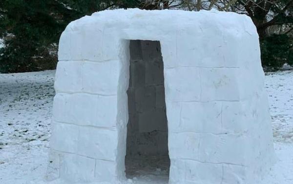 Риелтор показал худший дом, и люди тут же захотели в нём жить. Правда, сделать это может только Ледяной Король