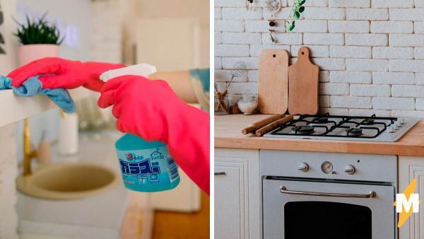 Хозяйка помыла плиту - и привет, новая фобия. Спойлер: понять, что на фото не так, смогут только внимательные