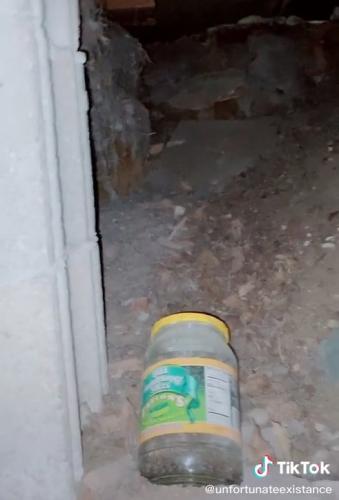 Тиктокерша нашла под ковром дверь и не поверила глазам. Проход вёл в не просто комнату, а убежище Хэнка Хилла