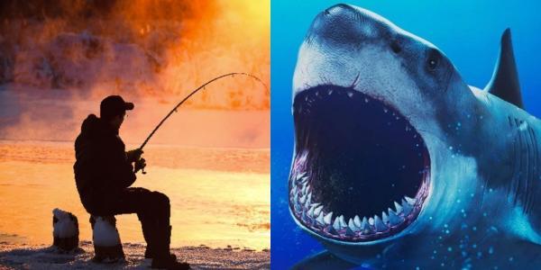 Рыбак поймал акулу с сюрпризом. Её детёныш — копия человека, но вы не захотите встретиться с таким ночью