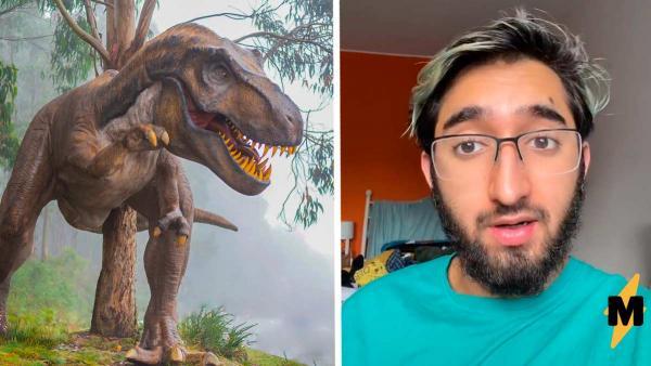 Блогер рассказал, как учённые поняли, какого цвета были динозавры. Они просто взглянули на Могучих рейнджеров
