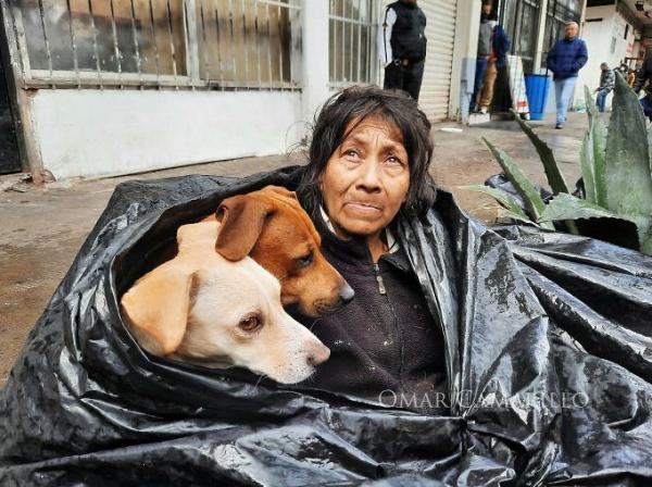 «Мне не нужна помощь» — сказала старушка из мусорного мешка. Она 8 лет живёт вместе с 6 собаками на улице