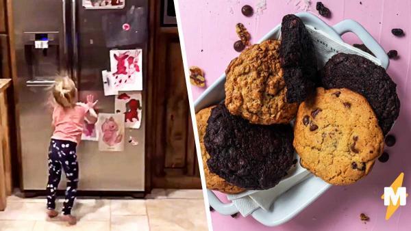 Родители спрятали печенье, а дочь переиграла их в духе Человека-паука. Но её скиллы скалолаза беспокоят людей