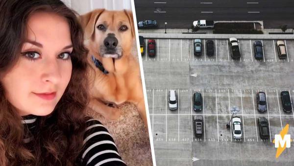 Девушка сняла машины на парковке и сильно испугалась. Люди хотят звонить в полицию, похоже рядом преступники