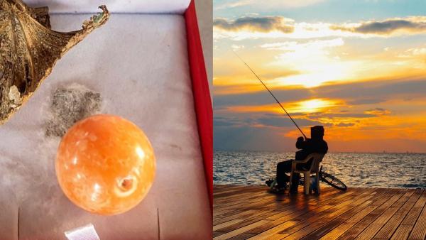 Рыбак выловил жемчужину-аскорбинку, и золотая рыбка ему не нужна. Одна эта крошка может исполнить все желания