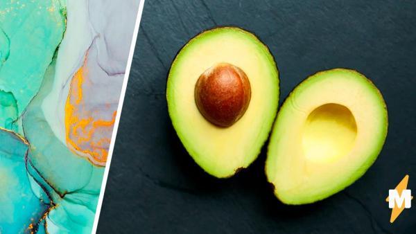 В Сети показали авокадо, ломающее глаза (и матрицу). Чтобы понять, есть ли в нём косточка, люди зашли далеко