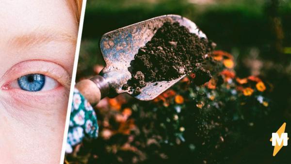 Хозяин убирался в саду и вовремя посмотрел под ноги. Снизу на него смотрели женские глаза и полмиллиона рублей