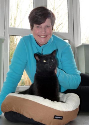 Кот отправился на прогулку и закосплеил Бильбо Бэггинса. Его путешествие длинной в 11 лет достойна трилогии