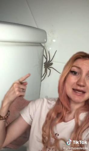 Девушка увидела в своей уборной паука, но избавляться от него не спешит. Ведь он