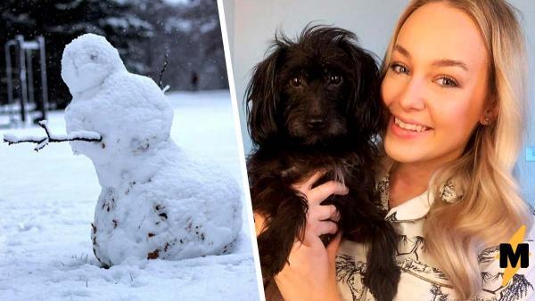 Снеговик качает пёсика на руке, но на видео всё иначе. Магия ни при чём, ведь в игру вступает фантазия
