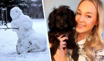 Хозяйка гуляла в парке и увидела, как её пса качает на руках снеговик. Никакой магии — собака создала иллюзию