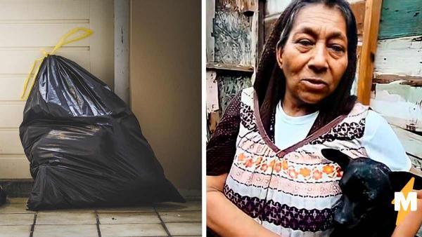 Старушка 8 лет живёт в мусорном мешке и не хочет другой жизни. Уйти с улицы бездомной не даёт стая собак
