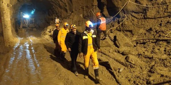 Спасатели пытались прогнать пса, который приходил к тоннелю. Его оставили в покое, когда поняли, кого он ждёт