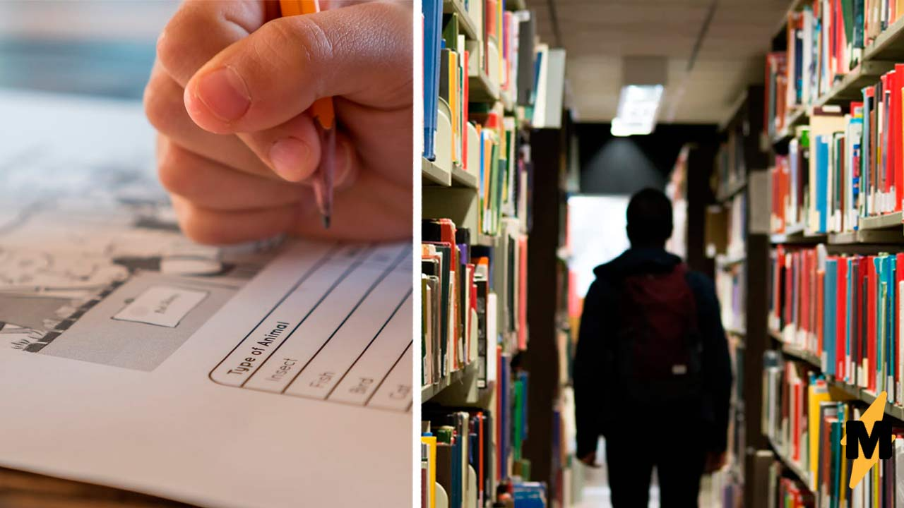 Школьники попросили пересдать экзамен, но их боль вам не понять. Расстроившие их оценки многим даже не снились