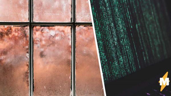 Студент показал фото двора, и матрица треснула. Увидеть что-то, кроме кадра из видеоигры, на снимке невозможно