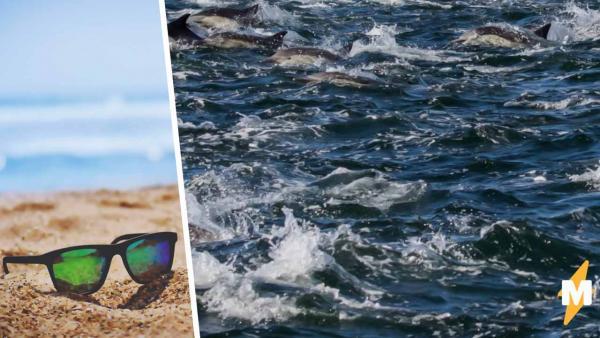 """На фото с дельфинами есть человек - нашли? Это случай из разряда: """"Я сначала не видел, а потом как закричал"""""""