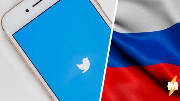 Россияне открыли для себя клон Twitter – соцсеть Twibe. Но удалили аккаунты после якобы слива данных властям