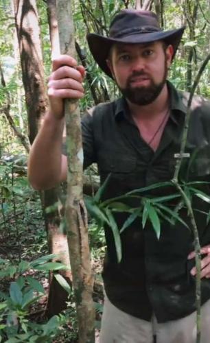 Ведущий снял себя в джунглях и сломал мозг зрителям. В кадре два героя, но увидеть второго глаза отказывались