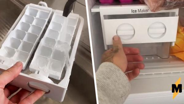 Тиктокер показал, как сделать лёд за минуту. Пользователи уверены: метод не только ломает мозг, но и морозилку