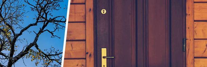 Мама нашла огромную ветку на двери и не удивилась, когда та решила уйти. Она поняла: гигант — новый член семьи