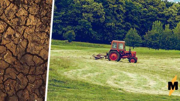 Фермер ехал по своему полю, но вжух - и оказался под ним. Тот случай, когда земля не даёт еду, а ест сама