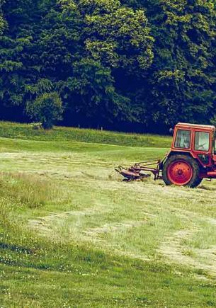 Фермер ехал по своему полю, но вжух — и оказался под ним. Тот случай, когда земля не даёт еду, а ест сама