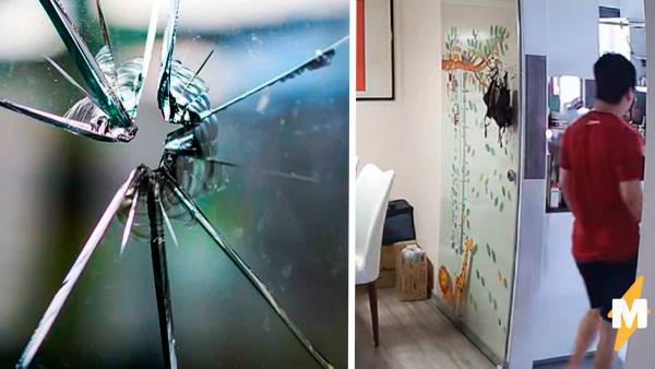 Хозяин квартиры разбил дверь из закалённого стекла одним взглядом.
