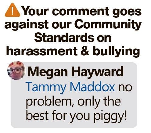 """Приют морских свинок могут закрыть, а владельцам смешно. Facebook показал, как ещё можно понять слово """"свинка"""""""