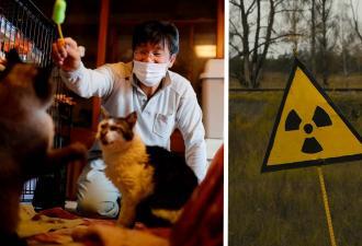 Сталкер живёт в ядерной зоне после катастрофы, но не ради артефактов. Его влечёт то, перед чем люди бессильны