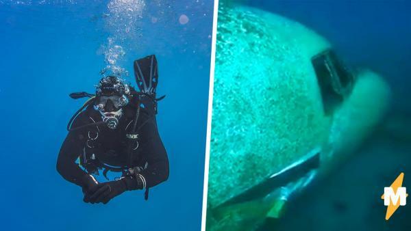 дайвер исследовал утонувший самолёт и нашёл скелет