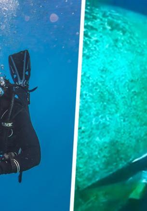 Дайвер изучал затонувший самолёт и нашёл скелет, но копы тут бессильны. Разгадка этого дела – на поверхности