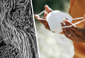 Учёные показали, как выглядят маски под микроскопом. Кадры объясняют, почему плотность ткани — это не главное