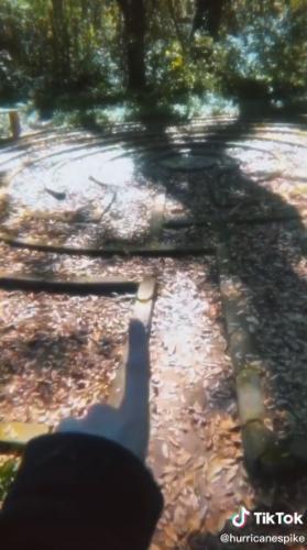 Девушка нашла в лесу старую хижину, но больше насторожил лабиринт. Люди уверены, что это портал в другой мир