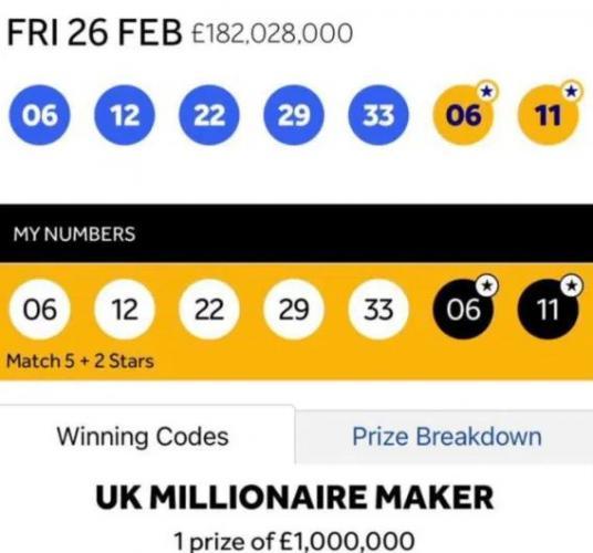 Пара размышляла, куда потратить выигрышные миллионы. Никуда, ведь совпадение чисел — не единственное условие