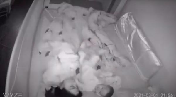 Родители хотели хорошенько поспать, но у их малыша были другие планы. Поучилось видео, которое выбесит любого