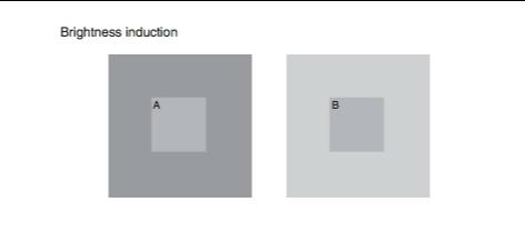 Квадраты выглядят как оптическая иллюзия, но всё сложнее. Это простой тест на наличие депрессии, и он вас ждёт