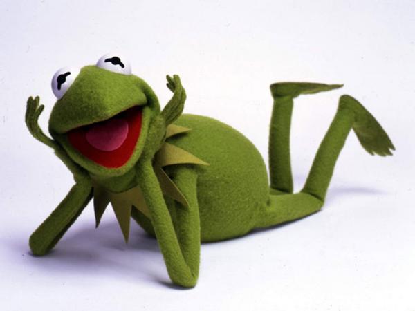 На Филиппинах нашли самую милую лягушку в мире. А почему она самая? Да просто это же Лягушонок Кермит!