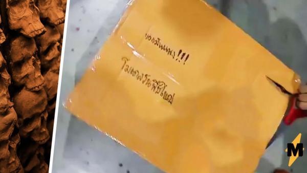 Анимешник отправил фигурку почтой и распугал всех её сотрудников. Содержимое посылки