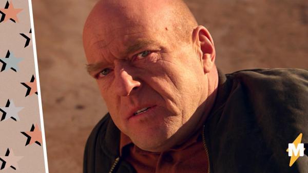 Хэнк Шрейдер пустился во все тяжкие в меме. Актёр из Breaking Bad стал шаблоном на все случаи жизни
