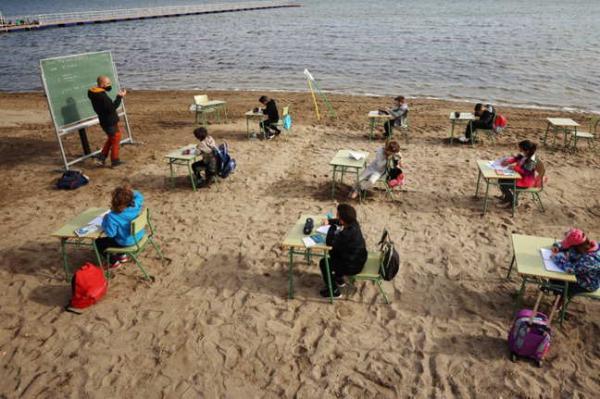 Ученики на уроке залипают на чаек, и двойка им не грозит. Там, где их учат, слушать хочется не учителя, а море