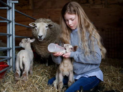 Школьница сломала систему и стала не блогером, а успешным фермером. Её мечта - стать настоящей пастушкой