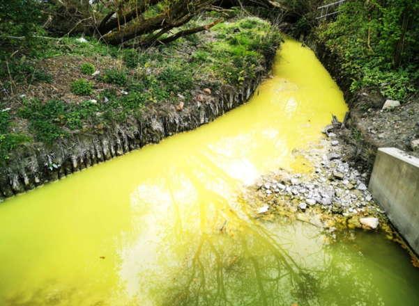 Река светится жёлтым, и это не сбой матрицы. Кажется, отходы с завода Гомера Симпсона сливали в неё