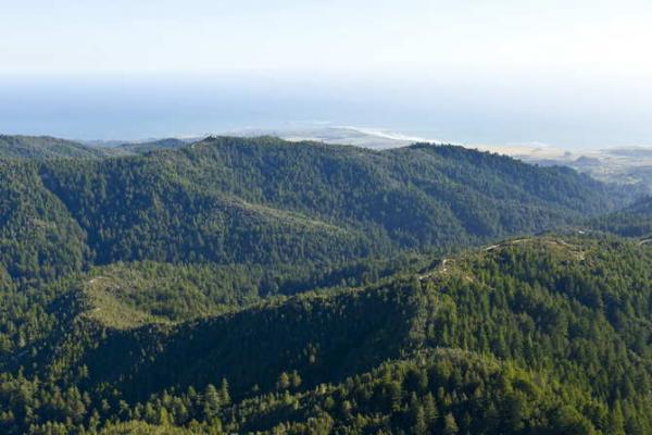Учёным хватило одного взгляда на холмы с фото, чтобы предсказать конец света. Они объяснили, что с ними не так