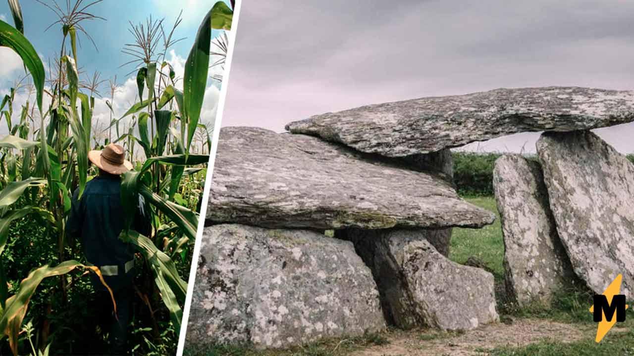 Фермер наткнулся на груду камней и в шутку сдвинул один из них. Увиденное превратило его в Индиану Джонса
