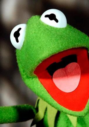 На Филиппинах нашли самую милую лягушку в мире. Это неожиданный кроссовер Лягушонка Кермита и Эдварда Каллена