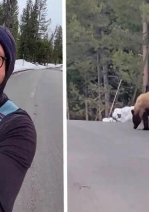 Бегун на видео уговорил медведя его не есть — буквально. Заклинатель мишек найден, Пятачок покупает курс