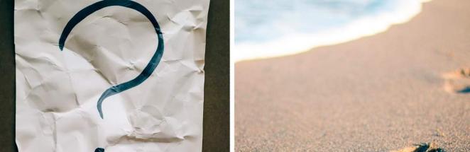 Пара нашла на пляже шар, но в руки такой не возьмёшь. Его зубы предупреждают — кусь будет не из приятных