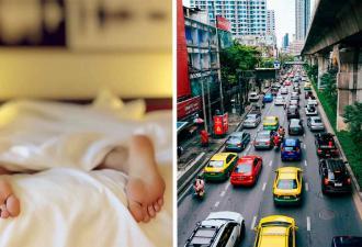 Соня лёг поспать, только просчитался с местом. Даже крики водителей на шоссе не помешали его отдыху