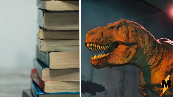 Грустный динозавр смотрит вдаль и дарит нам мем. В детской книге нашёлся ваш (наш тоже) тотемный зверь